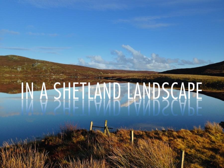 In a Shetland Landscape