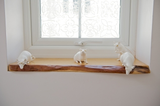 Wook Jae Maeng Mice on window sill